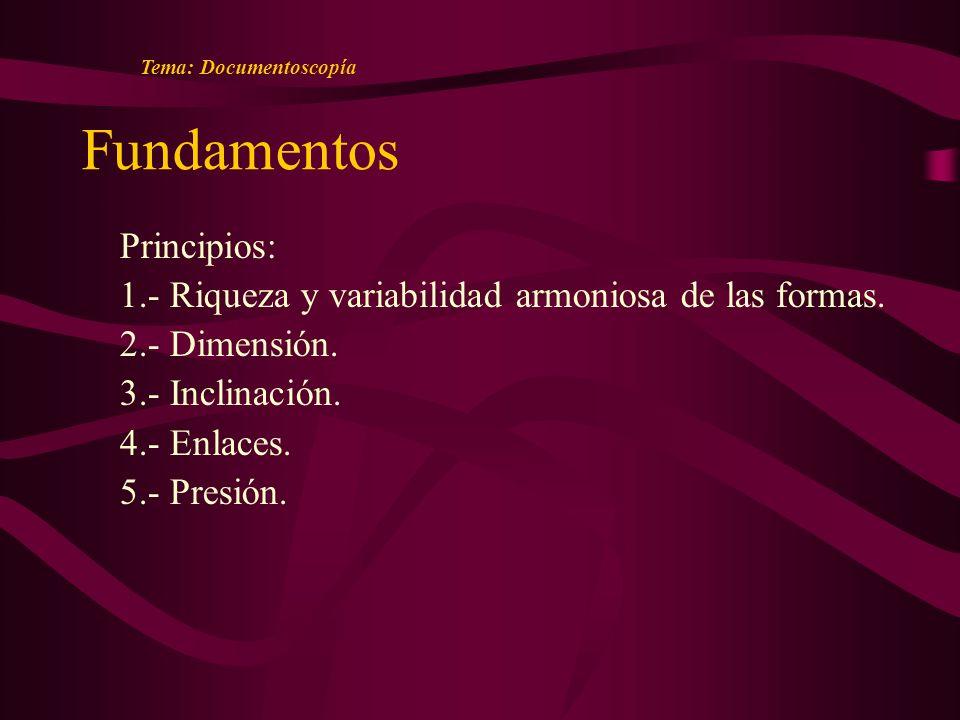 Fundamentos Principios: 1.- Riqueza y variabilidad armoniosa de las formas.
