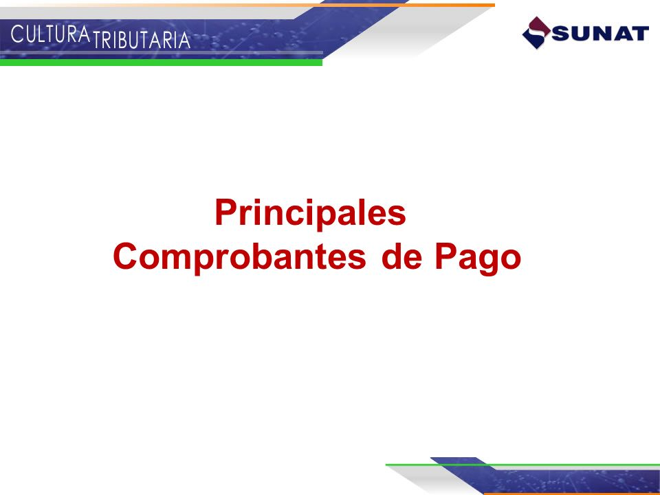 Baja de Comprobantes de Pago ¿En qué casos se debe solicitar la baja de comprobantes de Pago.