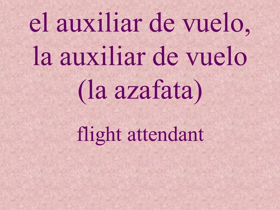 el auxiliar de vuelo, la auxiliar de vuelo (la azafata) flight attendant