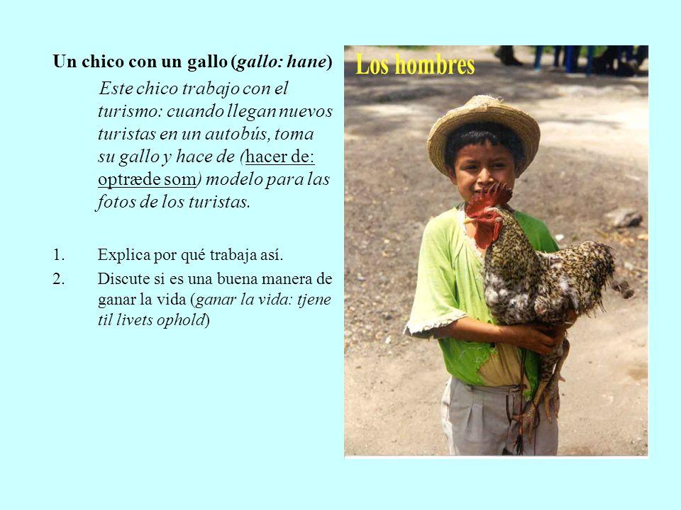 Un chico con un gallo (gallo: hane) Este chico trabajo con el turismo: cuando llegan nuevos turistas en un autobús, toma su gallo y hace de (hacer de: