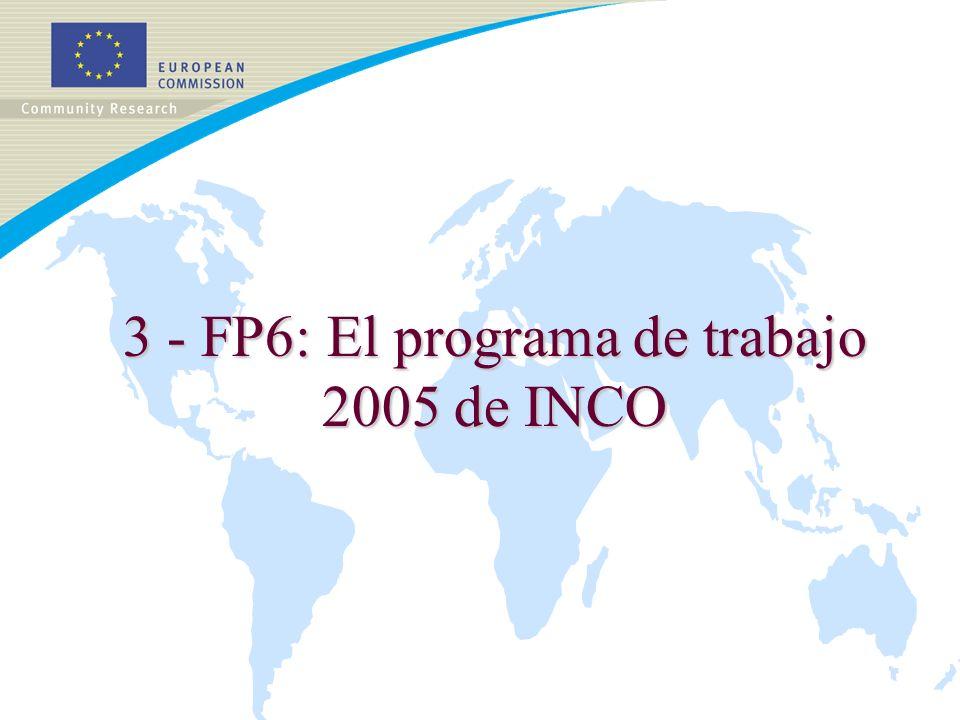 3 - FP6: El programa de trabajo 2005 de INCO