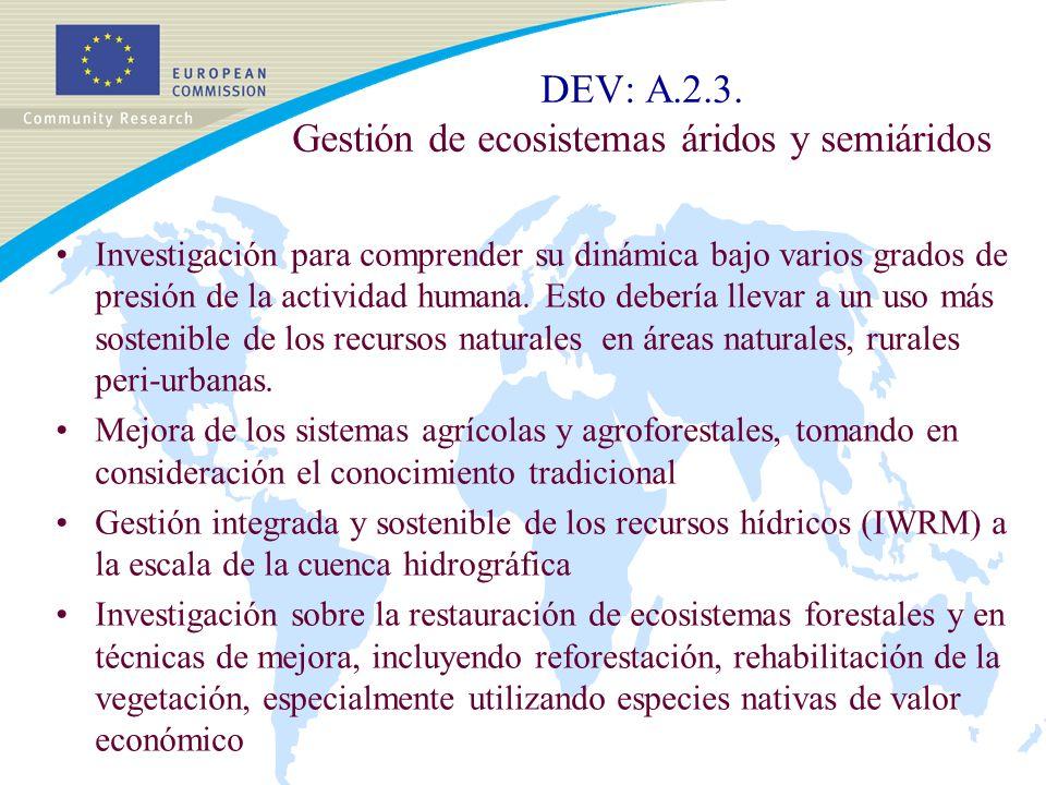 DEV: A.2.3.