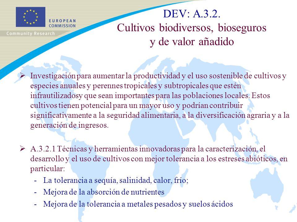 DEV: A.3.2.