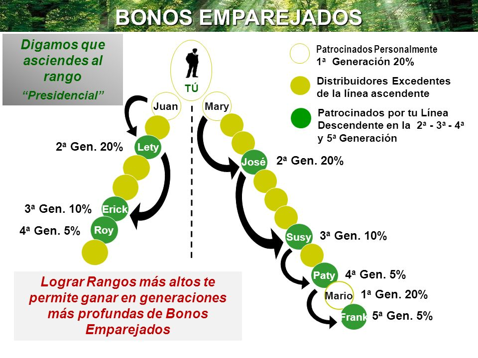 BONOS EMPAREJADOS Mary YOU José 2 a Gen. 20% 3 a Gen. 10% Lograr Rangos más altos te permite ganar en generaciones más profundas de Bonos Emparejados