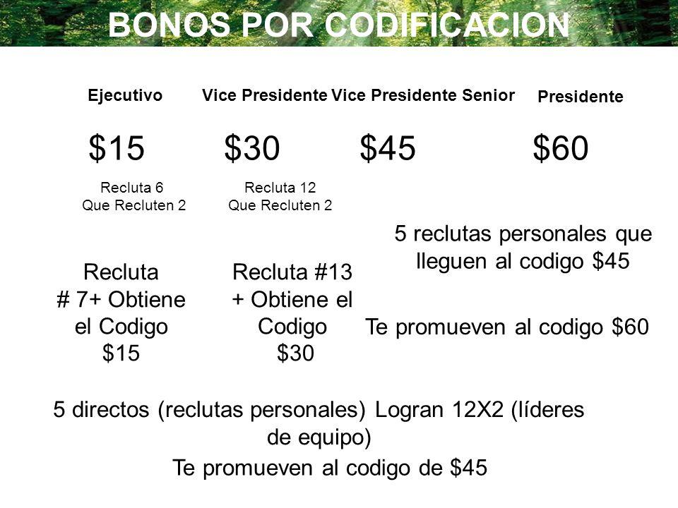 $15$30$45 $60 Recluta 6 Que Recluten 2 Recluta # 7+ Obtiene el Codigo $15 Recluta 12 Que Recluten 2 Recluta #13 + Obtiene el Codigo $30 5 directos (re