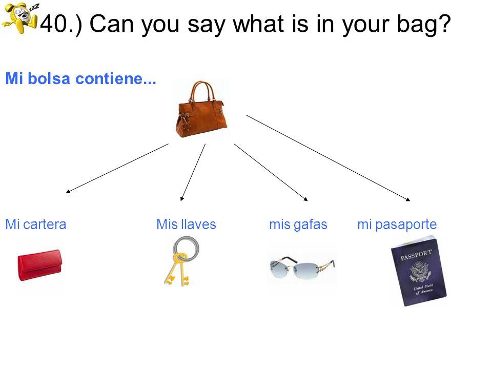 40.) Can you say what is in your bag? Mi bolsa contiene... Mi cartera Mis llaves mis gafas mi pasaporte