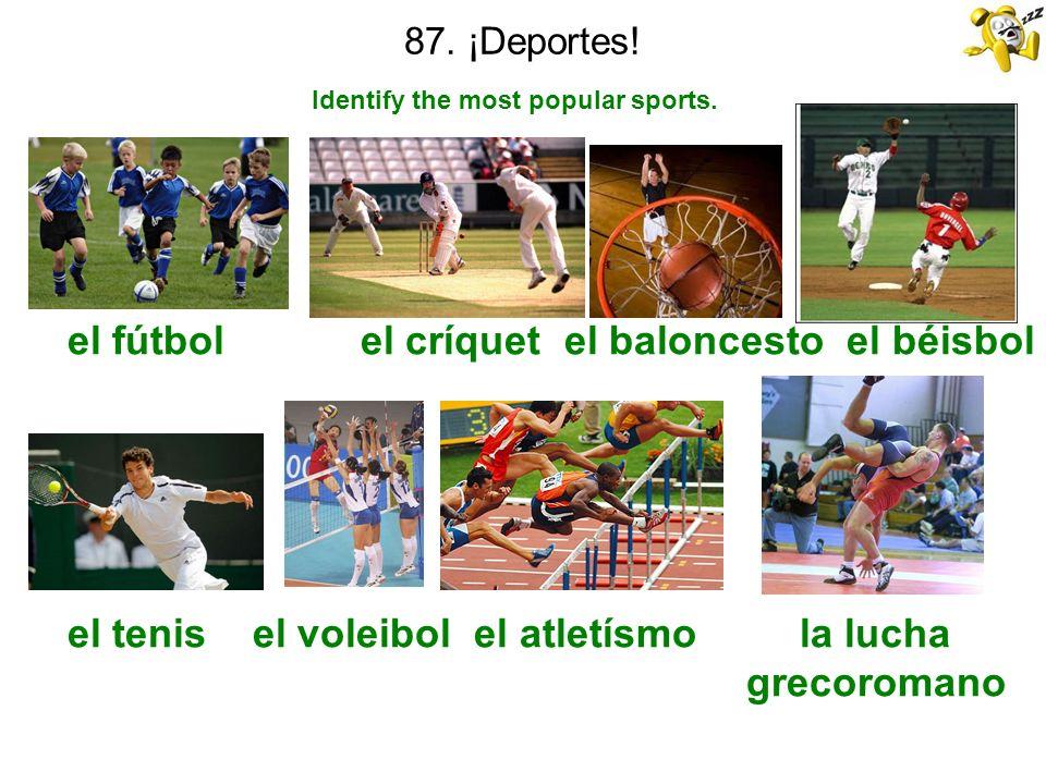 87. ¡Deportes! Identify the most popular sports. el fútbol el críquet el baloncesto el béisbol el tenis el voleibol el atletísmo la lucha grecoromano