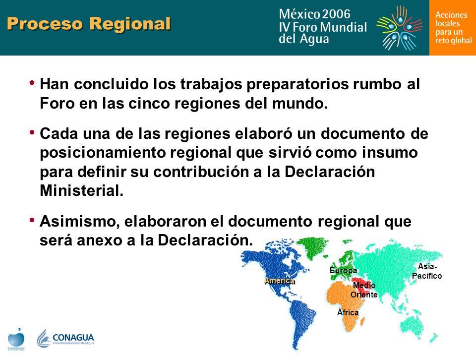 Proceso Regional Han concluido los trabajos preparatorios rumbo al Foro en las cinco regiones del mundo. Cada una de las regiones elaboró un documento