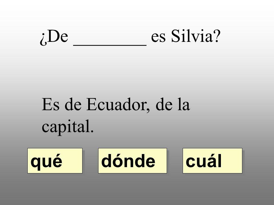 ¿De ________ es Silvia Es de Ecuador, de la capital. dónde qué cuál