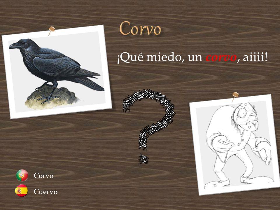 ¡Qué miedo, un corvo, aiiii! Cuervo Corvo