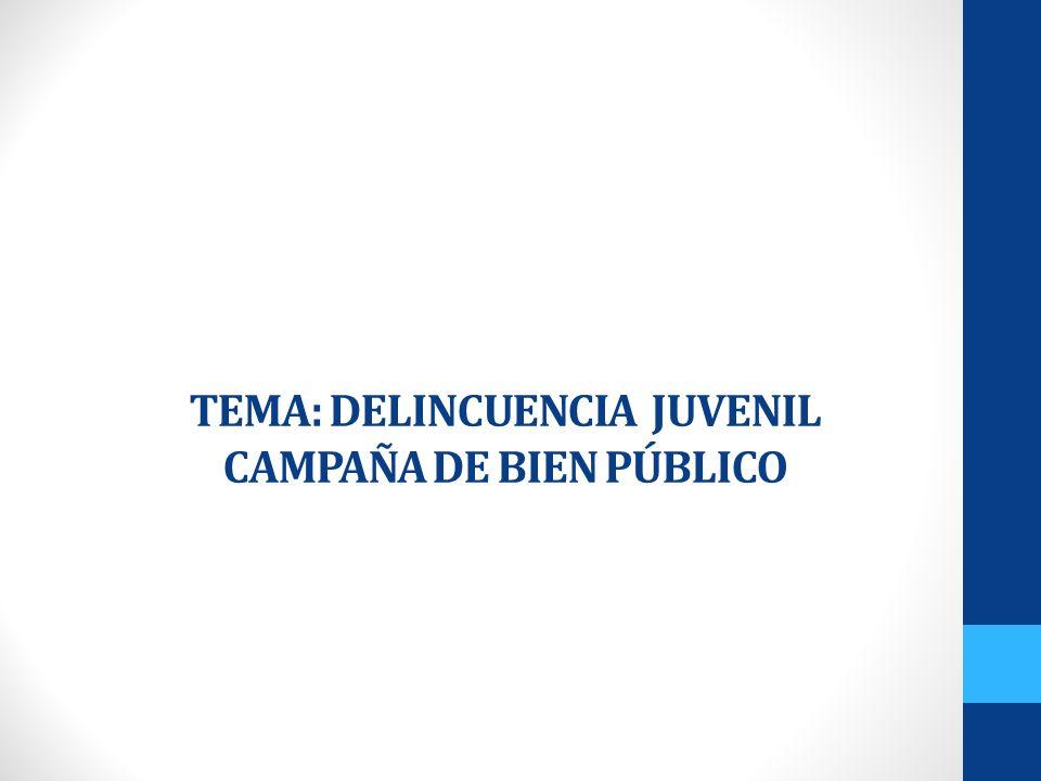 TEMA: DELINCUENCIA JUVENIL CAMPAÑA DE BIEN PÚBLICO