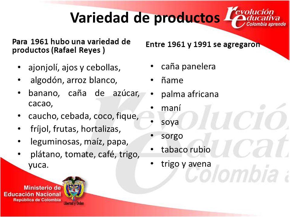 Variedad de productos Para 1961 hubo una variedad de productos (Rafael Reyes ) ajonjolí, ajos y cebollas, algodón, arroz blanco, banano, caña de azúcar, cacao, caucho, cebada, coco, fique, fríjol, frutas, hortalizas, leguminosas, maíz, papa, plátano, tomate, café, trigo, yuca.