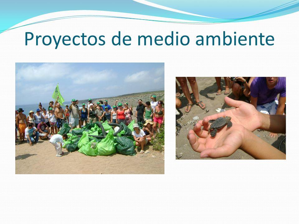 Proyectos de medio ambiente