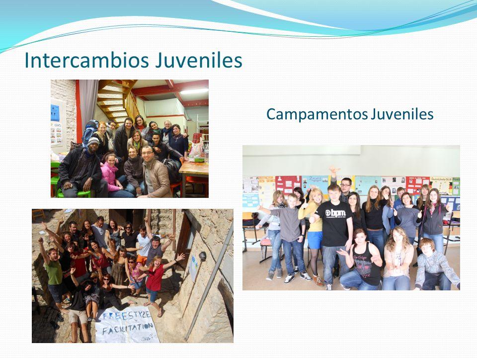 Intercambios Juveniles Campamentos Juveniles