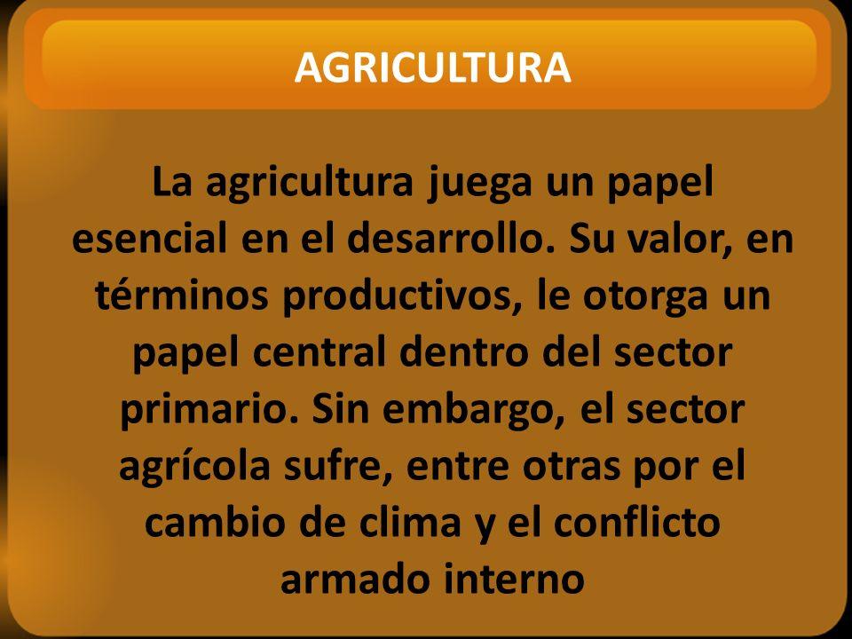 AGRICULTURA La agricultura juega un papel esencial en el desarrollo.