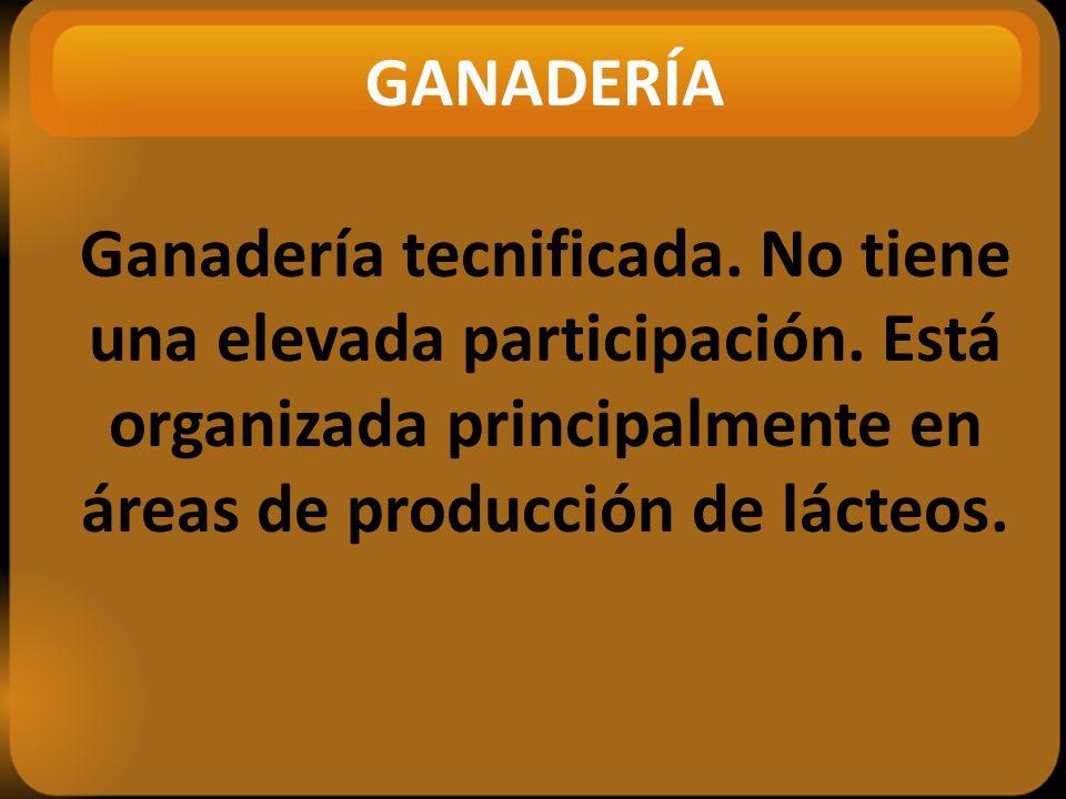 GANADERÍA Ganadería tecnificada.No tiene una elevada participación.