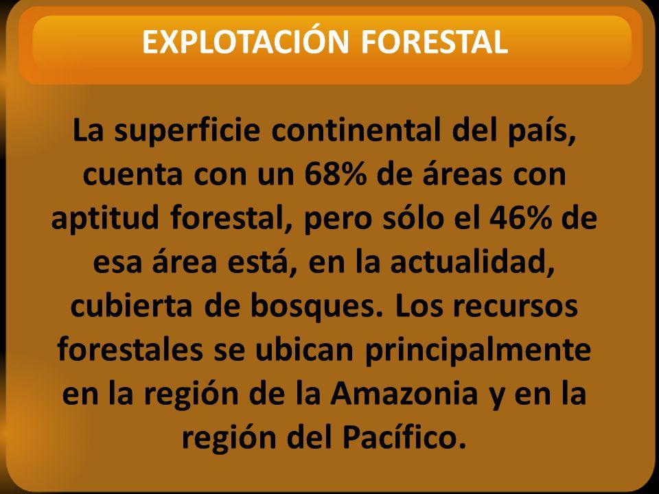 EXPLOTACIÓN FORESTAL La superficie continental del país, cuenta con un 68% de áreas con aptitud forestal, pero sólo el 46% de esa área está, en la actualidad, cubierta de bosques.