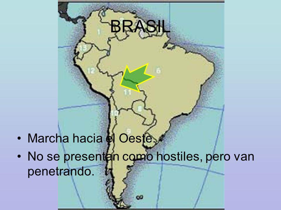 VENTAJAS DE LA INTERCONEXION PERU – BOLIVIA - BRASIL Mayor velocidad en el intercambio comercial Se incrementaría el transporte multimodal.