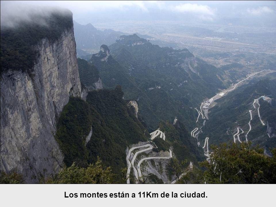 Los montes están a 11Km de la ciudad.