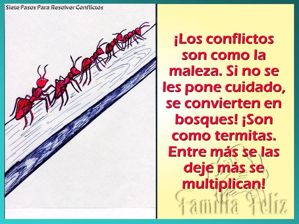 ¡Los conflictos son como la maleza. Si no se les pone cuidado, se convierten en bosques! ¡Son como termitas. Entre más se las deje más se multiplican!