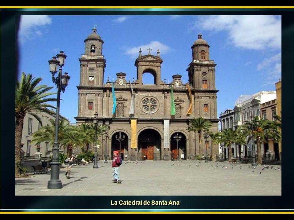 El sábado 19 saldremos a la misma hora y lugar que el día anterior, haremos una visita a la capital, Las Palmas, para conocer esta bella ciudad. El vi