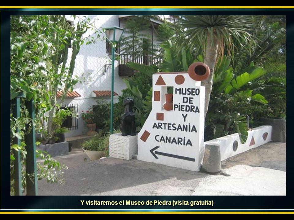 Después nos dirigiremos al barranco de Guadayeque (pueblo guanche) donde tomaremos un refresco en un bar cueva.