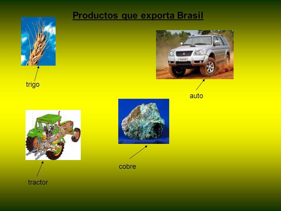 trigo cobre auto tractor Productos que exporta Brasil
