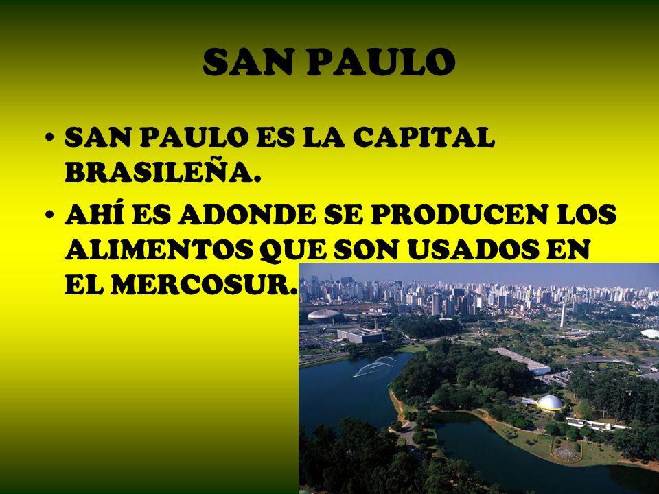 SAN PAULO SAN PAULO ES LA CAPITAL BRASILEÑA. AHÍ ES ADONDE SE PRODUCEN LOS ALIMENTOS QUE SON USADOS EN EL MERCOSUR.