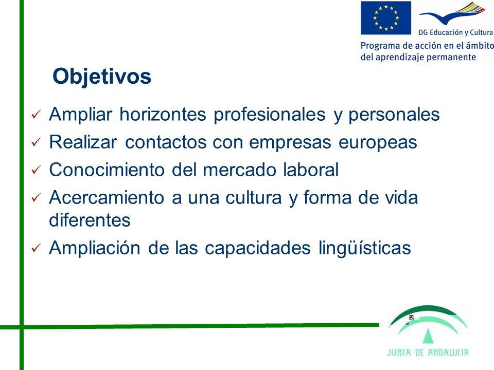 Objetivos Ampliar horizontes profesionales y personales Realizar contactos con empresas europeas Conocimiento del mercado laboral Acercamiento a una cultura y forma de vida diferentes Ampliación de las capacidades lingüísticas