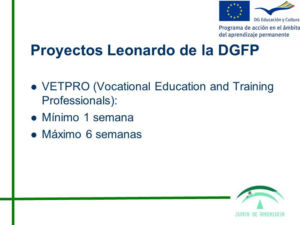 Proyectos Leonardo de la DGFP VETPRO (Vocational Education and Training Professionals): Mínimo 1 semana Máximo 6 semanas
