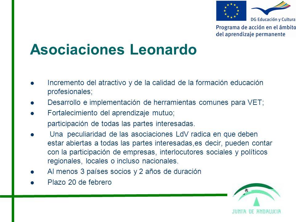 Asociaciones Leonardo Incremento del atractivo y de la calidad de la formación educación profesionales; Desarrollo e implementación de herramientas comunes para VET; Fortalecimiento del aprendizaje mutuo; participación de todas las partes interesadas.