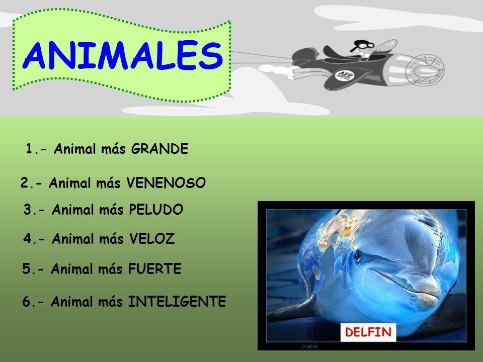 SALUD Por $ 3000 CULTURA GENERAL Por $ 2000 ANIMALES Por $ 1000 CINE Por $ 3000 FIN