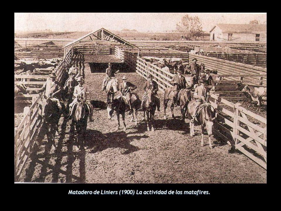 Matadero de Liniers (1900) La actividad de los matafires.