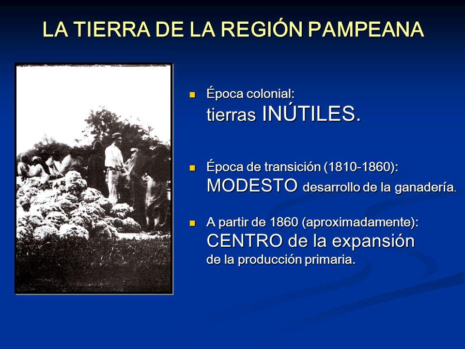 LA TIERRA DE LA REGIÓN PAMPEANA Época colonial: tierras INÚTILES. Época colonial: tierras INÚTILES. Época de transición (1810-1860): MODESTO desarroll