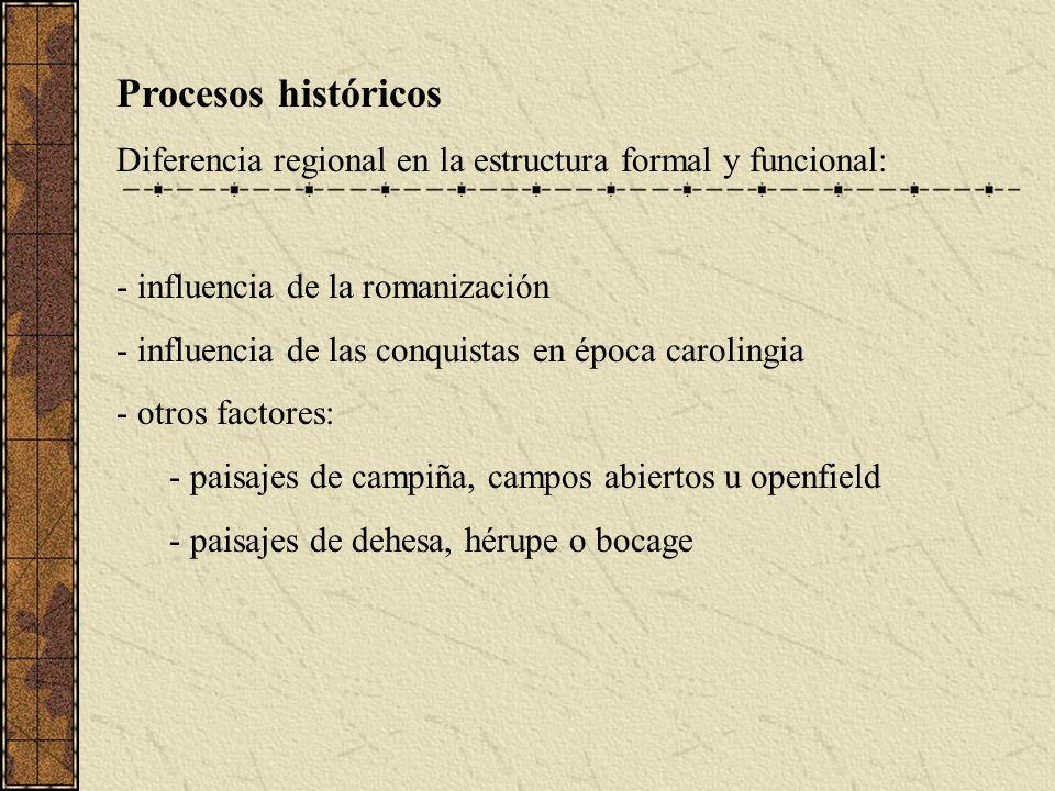 Procesos históricos Diferencia regional en la estructura formal y funcional: - influencia de la romanización - influencia de las conquistas en época carolingia - otros factores: - paisajes de campiña, campos abiertos u openfield - paisajes de dehesa, hérupe o bocage
