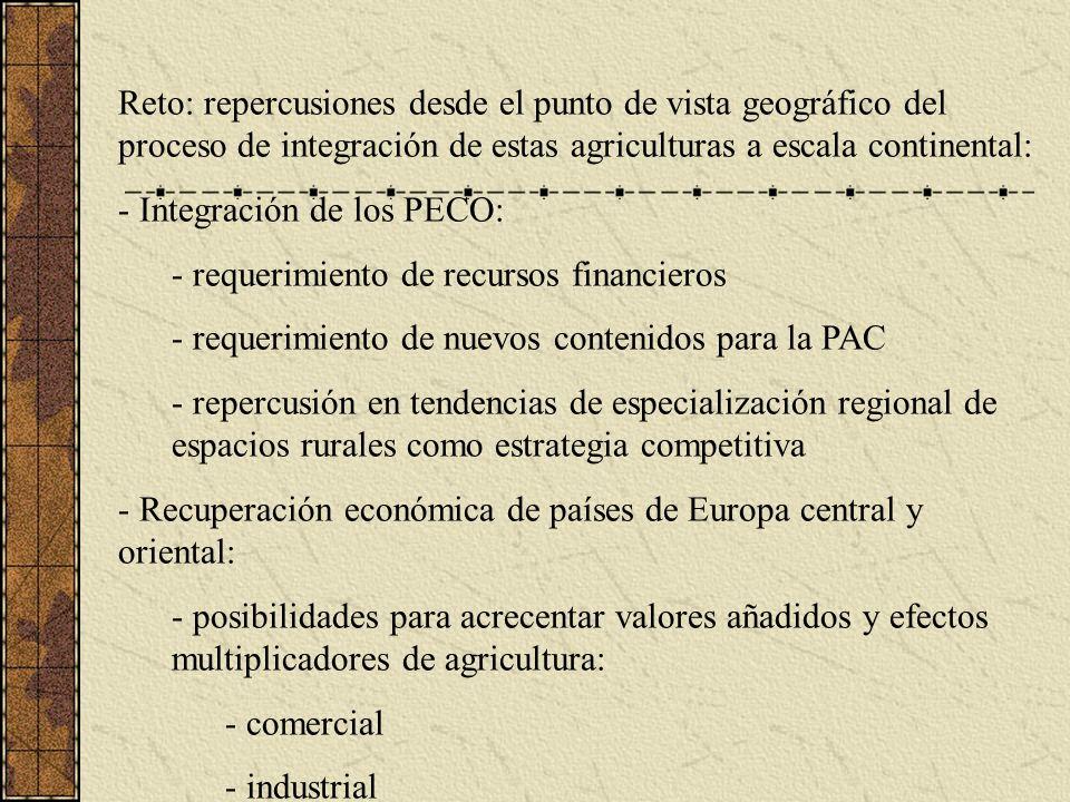 Reto: repercusiones desde el punto de vista geográfico del proceso de integración de estas agriculturas a escala continental: - Integración de los PECO: - requerimiento de recursos financieros - requerimiento de nuevos contenidos para la PAC - repercusión en tendencias de especialización regional de espacios rurales como estrategia competitiva - Recuperación económica de países de Europa central y oriental: - posibilidades para acrecentar valores añadidos y efectos multiplicadores de agricultura: - comercial - industrial