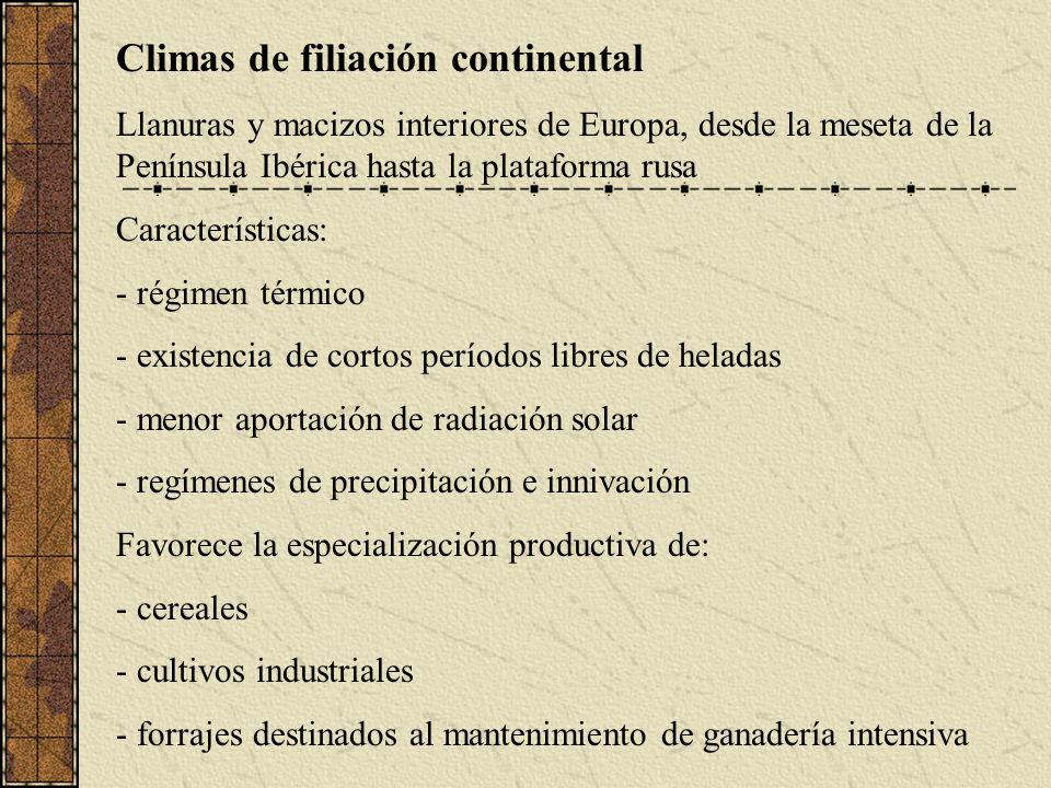 Diferenciación regional por la incidencia de procesos generales de índole técnica, política o social del s.