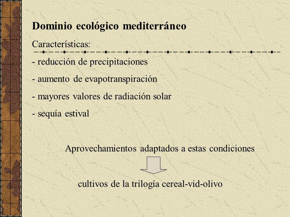 Dominio ecológico mediterráneo Características: - reducción de precipitaciones - aumento de evapotranspiración - mayores valores de radiación solar - sequía estival Aprovechamientos adaptados a estas condiciones cultivos de la trilogía cereal-vid-olivo