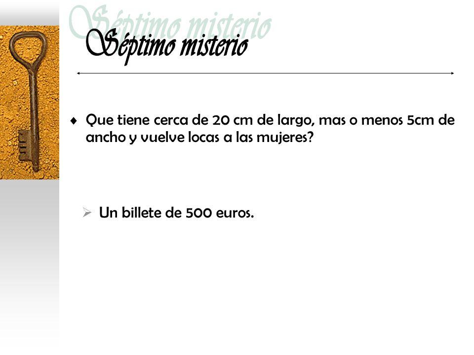 Que tiene cerca de 20 cm de largo, mas o menos 5cm de ancho y vuelve locas a las mujeres? Un billete de 500 euros.