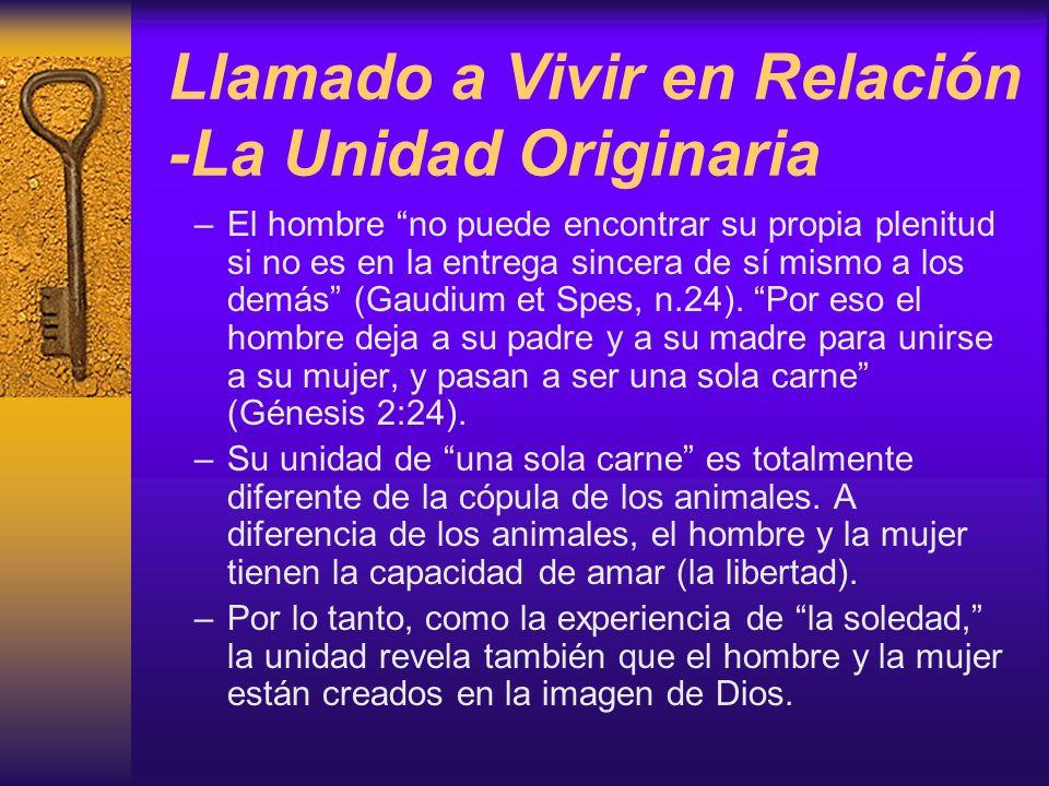 Llamado a Vivir en Relación -La Unidad Originaria –El hombre no puede encontrar su propia plenitud si no es en la entrega sincera de sí mismo a los de