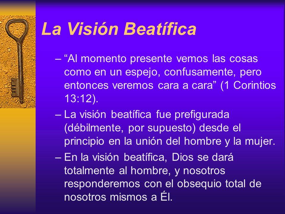 La Visión Beatífica –Al momento presente vemos las cosas como en un espejo, confusamente, pero entonces veremos cara a cara (1 Corintios 13:12). –La v