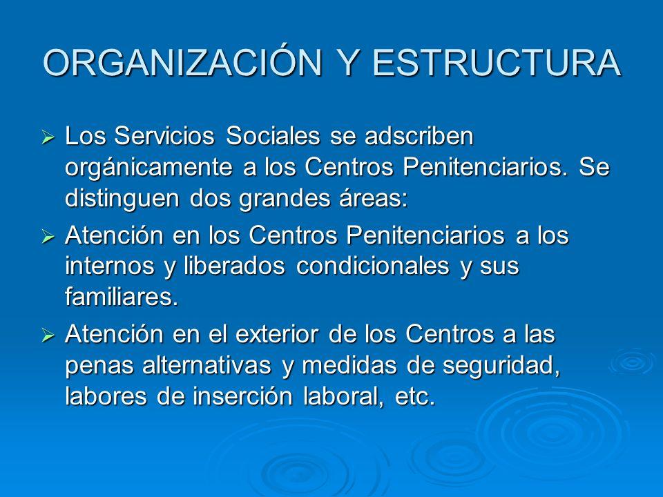ORGANIZACIÓN Y ESTRUCTURA Los Servicios Sociales se adscriben orgánicamente a los Centros Penitenciarios. Se distinguen dos grandes áreas: Los Servici