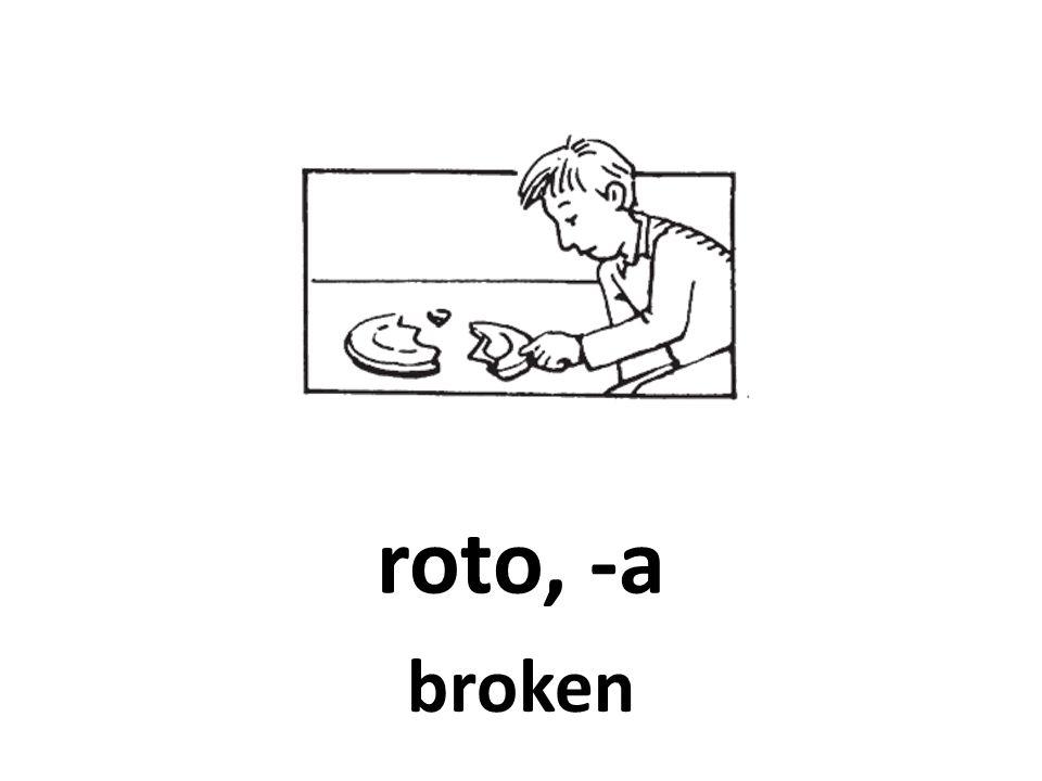 roto, -a broken