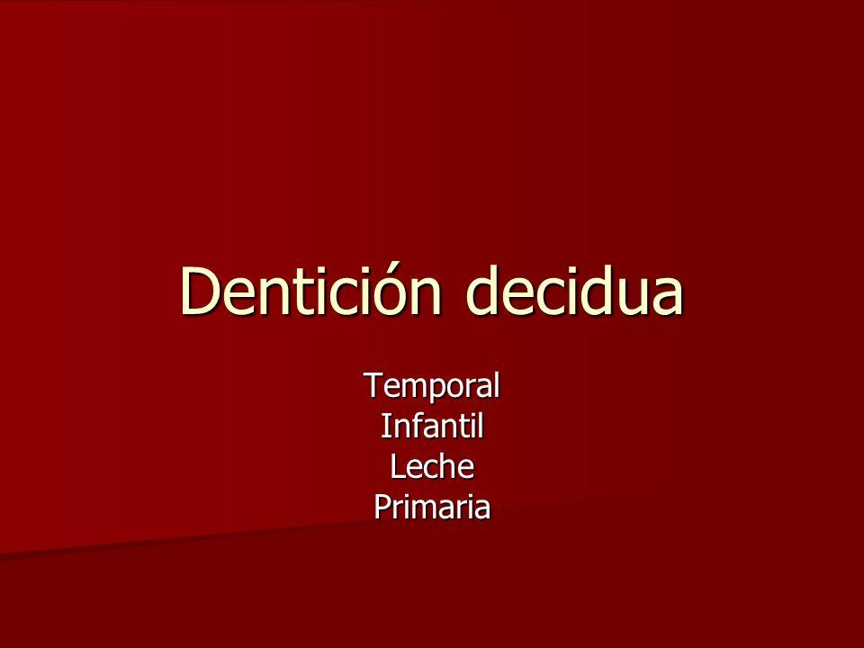 Dentición decidua TemporalInfantilLechePrimaria