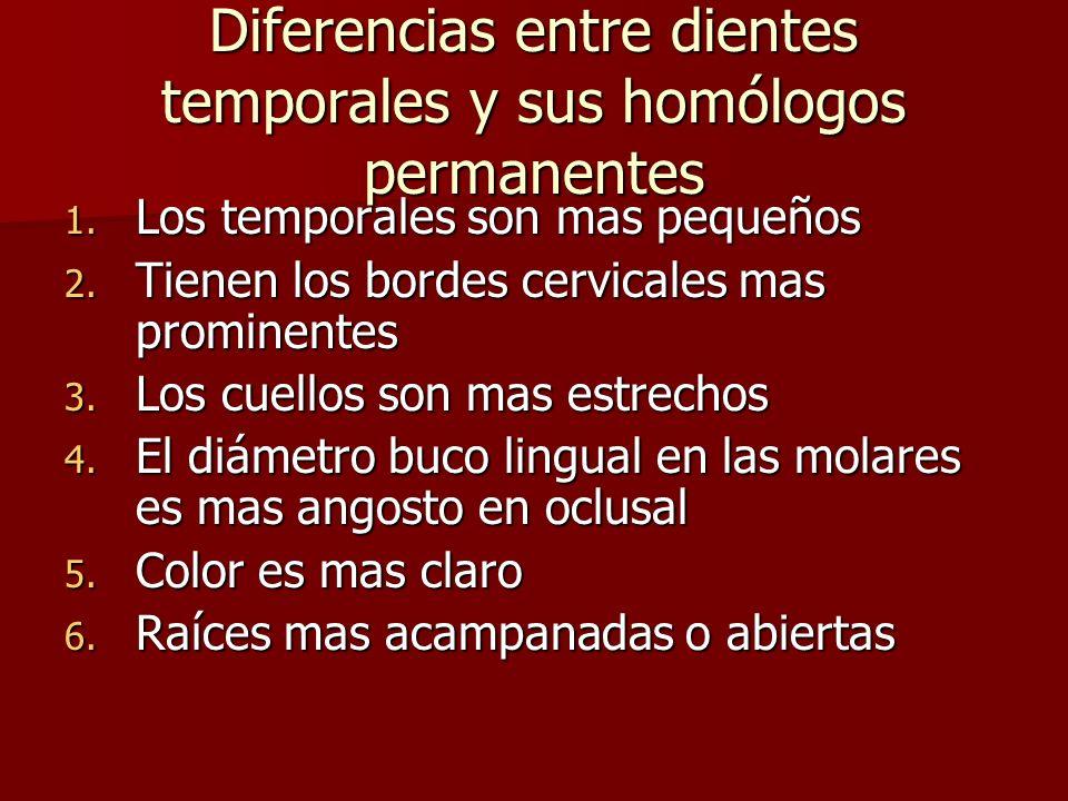 Diferencias entre dientes temporales y sus homólogos permanentes 1. Los temporales son mas pequeños 2. Tienen los bordes cervicales mas prominentes 3.