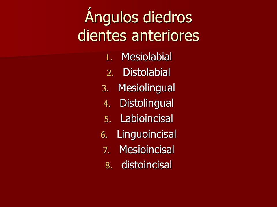 Ángulos diedros dientes anteriores 1. Mesiolabial 2. Distolabial 3. Mesiolingual 4. Distolingual 5. Labioincisal 6. Linguoincisal 7. Mesioincisal 8. d