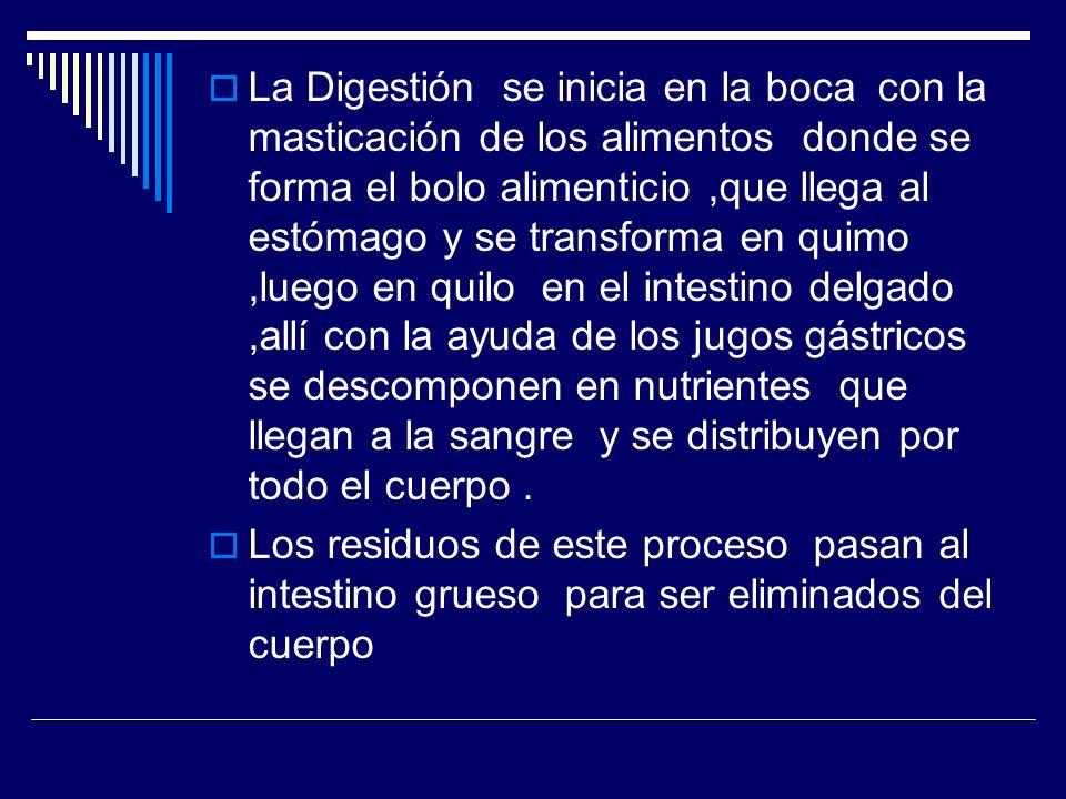 La Digestión se inicia en la boca con la masticación de los alimentos donde se forma el bolo alimenticio,que llega al estómago y se transforma en quim