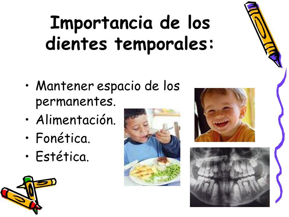 Importancia de los dientes temporales: Mantener espacio de los permanentes. Alimentación. Fonética. Estética.