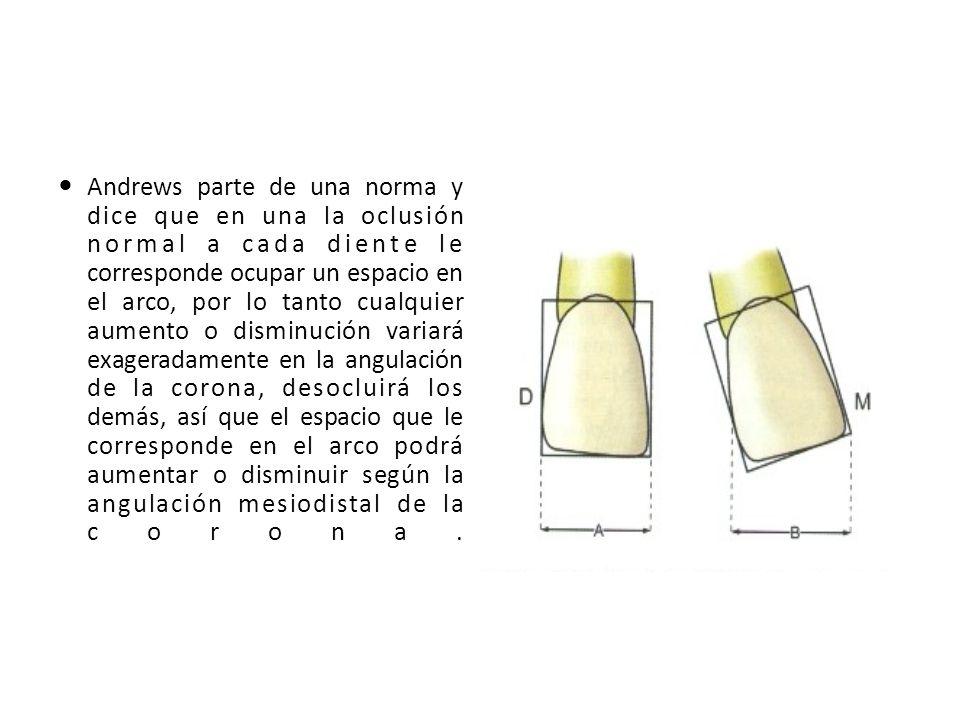 Andrews parte de una norma y dice que en una la oclusión normal a cada diente le corresponde ocupar un espacio en el arco, por lo tanto cualquier aume