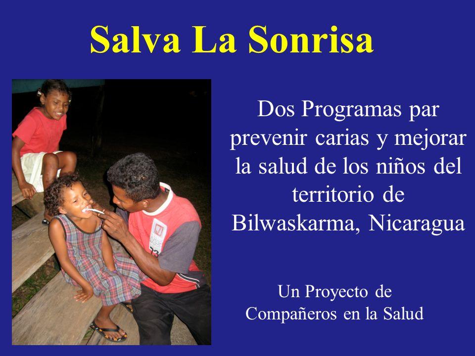 La intencion de esta programa es para mejorar la salud dental de los niños indiginas del territorio de Bilwaskarma Hay dos programas del mismo proyecto.